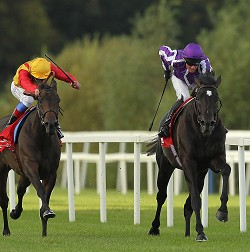 Horse Racing - Red Mills Irish Champions Stakes Day - Leopardstown Racecourse