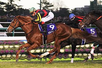 Orfevre當選日本馬王