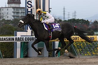 20121202_Nihonpiro_Ours
