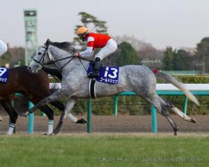 首次過終點之時,Gold Ship在包尾位置。 Source: Kate Hunter / Japan Racing Network