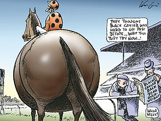 black caviar comic