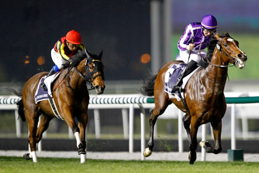 "Iwata, riding Gentildonna of Japan, races to the finish line during the eighth race ""Dubai Sheema Classic"" of the Dubai World Cup at the Meydan Racecourse in Dubai"
