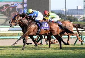 「龍王」趕及在終點前追過「白山明月」勝出賽事。 Source: Sankei Sports