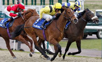 嶺飛馬場舉行的冬季打吡是全英國首場膠沙地分級賽。 Source: Mark Cranham/racingpost.com