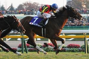 最後100米,貴婦人仍有領先優勢,就一到瞬間就幾乎沒有。 Source: Japan Racing Association