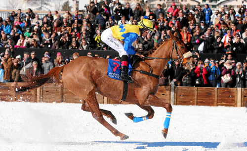 White Turf St. Moritz: 'Guebelin 75. Grosser Preis von St. Moritz', Future Security