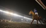 「蘇兆輝」自接下主帥工作後,終於贏出首場重要大賽。 Source: Edward Whitaker/racingpost.com