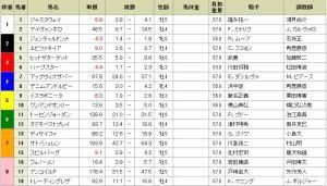 20141129_Japan_Cup_Tote