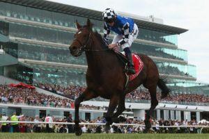 莫雅的出色發揮,使「貿保強者」輕鬆以四個馬位取勝。 Source:  Robert Cianflone/Getty Images