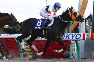 20141206_Hokko_Tarumae