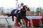 北港火山由前年不被看起的冷門馬,終於到今年贏出一級賽,泥地王還可以與Copano Rickey可以一拼。 Source: Keibalab