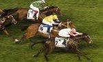「獨掌全權」今場積極也沒被困,最終在英國以外初奪一級賽。 Source: Edward Whitaker/racingpost.com