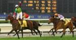 杜利萊為「夢仙」提早廢祝贏馬。 Source: HKJC