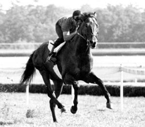 1968_Dr_Fager