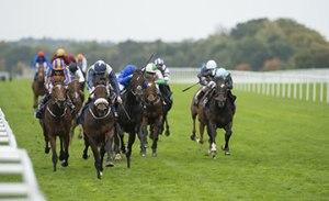 迷人島前戰大有進步,連冠軍錦標也能勝出,今年打理得不錯。 Source:  Edward Whitaker/racingpost.com