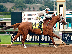 20160109_California_Chrome