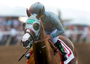 20160820_California_Chrome