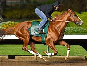 20170105_california_chrome