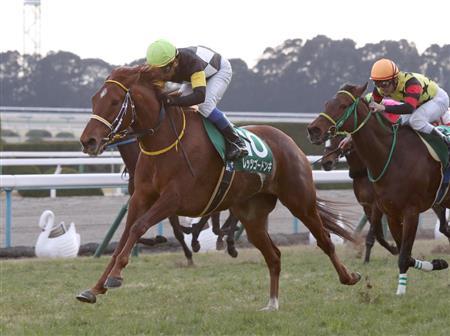 [Flameracing]香港國際賽事馬匹最終介紹,短途馬盡力一戰唐吉快跑