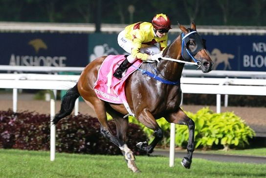 [Flameracing]新加坡賽馬公會推遲國際賽,減少獎金