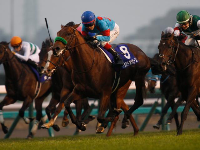 [Flameracing]日本頂級賽駒直接出戰一級賽現身
