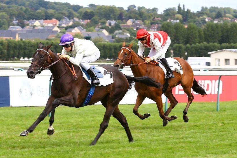 2019年6月16日賽馬日(11場田草、C+3跑道)+法國橡樹大賽全馬匹簡介及預測