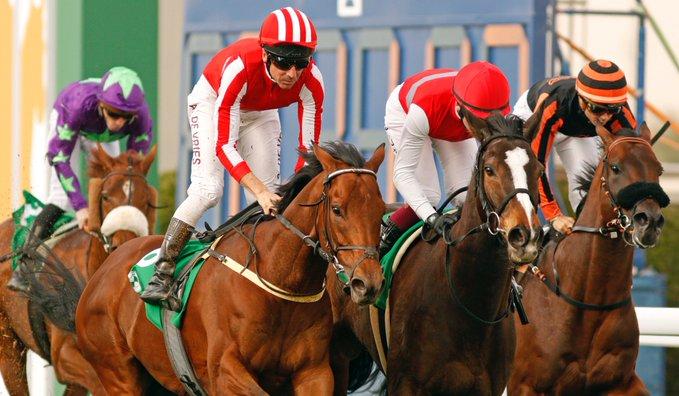 每日賽馬晚報(2021年1月14日),英愛正式禁「業餘人士」進入馬場,沙地盃賽馬日公開報名馬