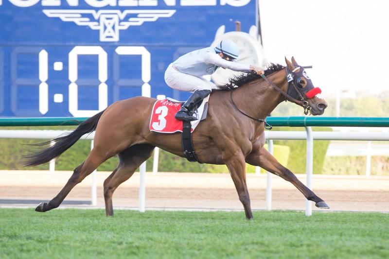 杜拜超級星期六第一部份,忠信泥地不可能的後上,美國馬飛馳在野奇襲短途草地賽