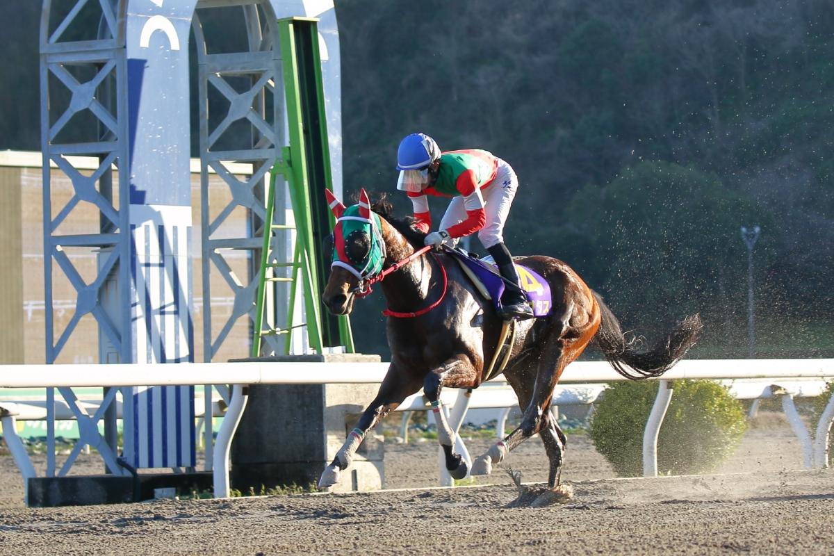 賽馬專題,日本高知競馬場走出谷底的奇跡