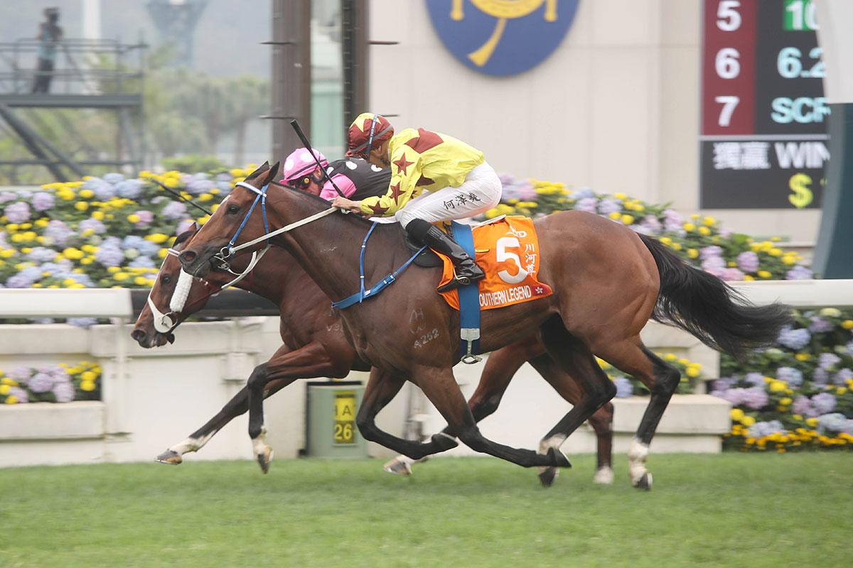 香港冠軍賽馬日出賽名單出爐