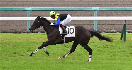 每日賽馬晚報(2020年7月4日),香港拍賣會至高無極,金子真人私家配合Jacaranda Lane大勝四個馬位