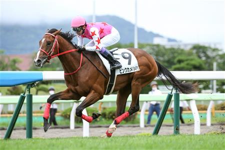 每日賽馬晚報(2020年7月19日),日本人木村和士贏出加拿大分級賽,東商變革半妹Pink Kamehameha輕鬆大勝