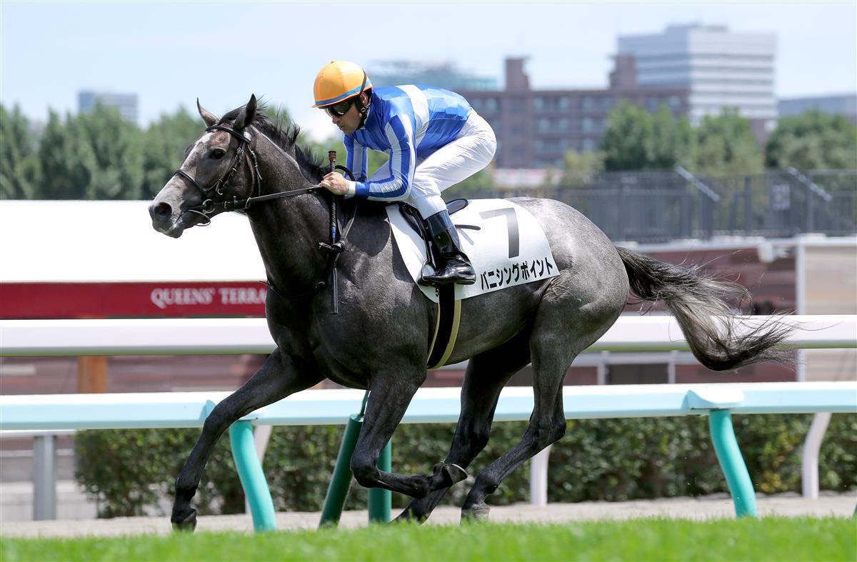 每日賽馬晚報(2020年9月17日),29匹歐洲馬準備前往澳洲,已有日本練馬師揚言挑戰肯塔基打吡,哀悼施慕齡特集