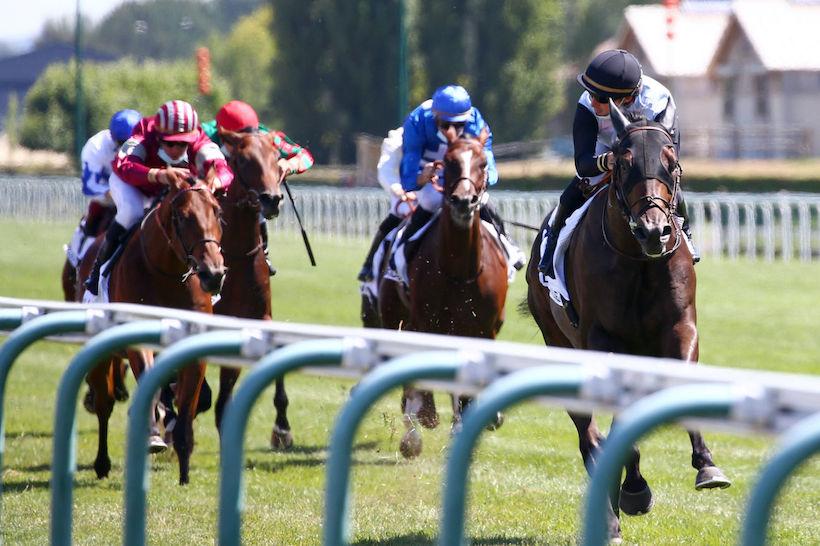 每日賽馬晚報(2020年8月5日),摩加利及約翰摩亞正式合體,日本中央競馬會向海外女將賣大包