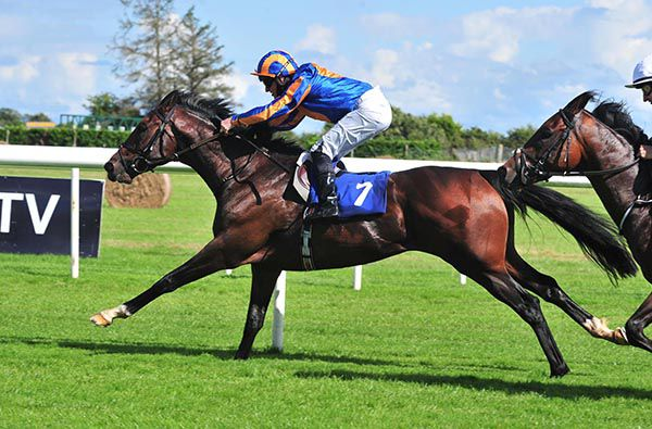 每日賽馬晚報(2020年8月19日),星耀峻嶺轉戰歌劇錦標,巴特殊最大兩匹對手是一對三歲馬