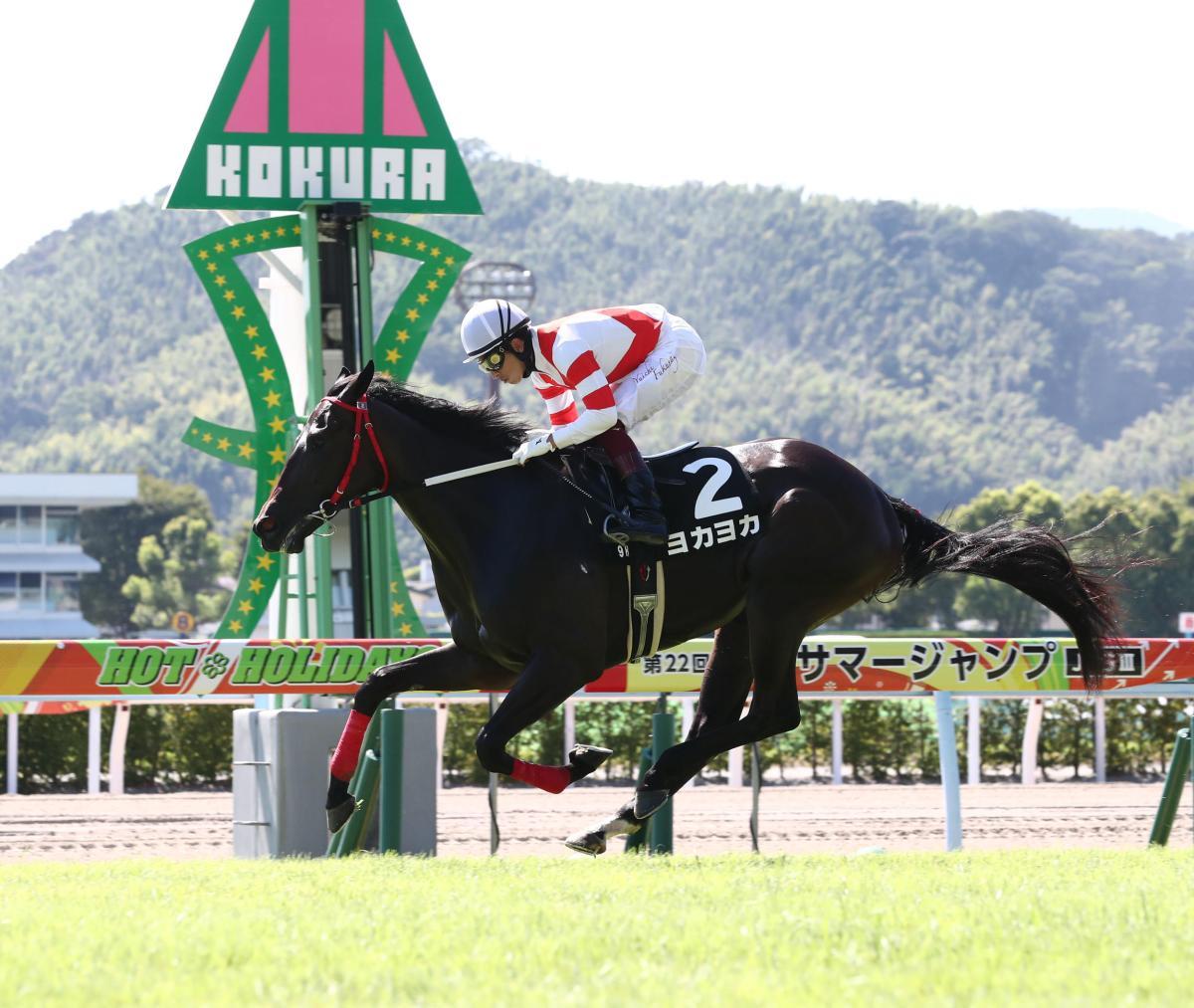 每日賽馬晚報(2020年12月9日),香港國際賽事場外專區,熊本馬突襲週日一級賽