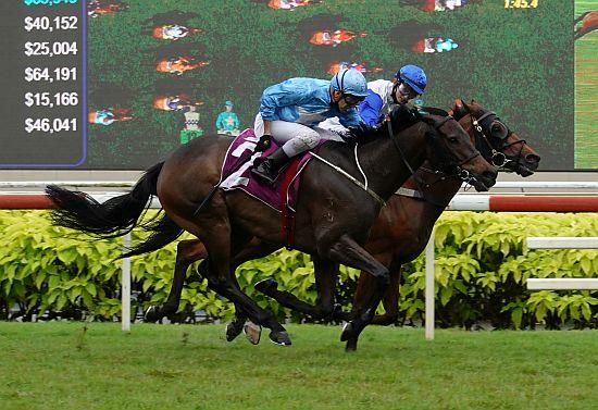 新加坡打吡,聖騎士找對人一氣後追