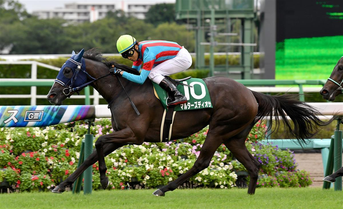 紫苑錦標,馬國女神擺脫陰霾再次贏馬