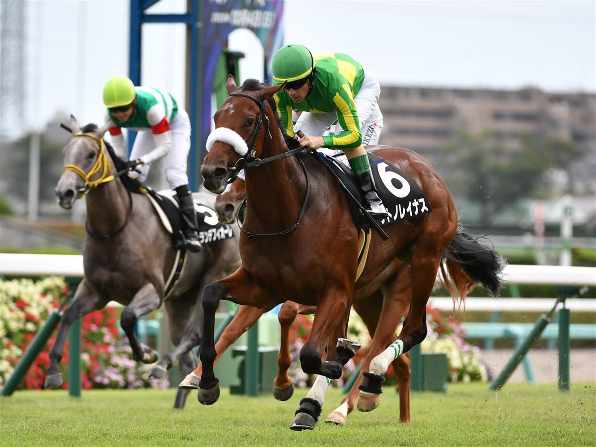 Satono Reinas的「東京賽事」敲定,是打吡大戰