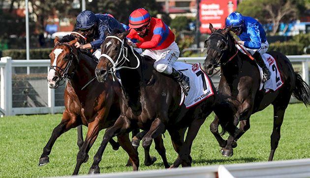 雍容爾雅專心悉尼賽事退出明星一哩賽