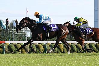 日本盃馬迷介紹壓軸篇,由無名長谷川牧場,到成為三冠馬后謀勇兼備的物語