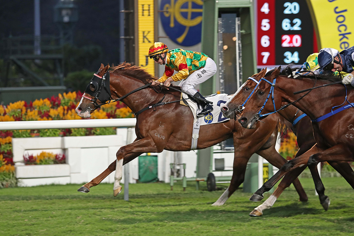 香港國際賽事氣泡對決,高大威猛越級挑戰第二擊
