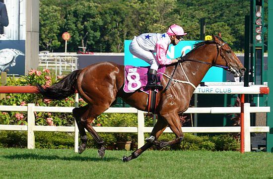新加坡賽馬出走潮持續,輪到地獄火(已證實去放草)