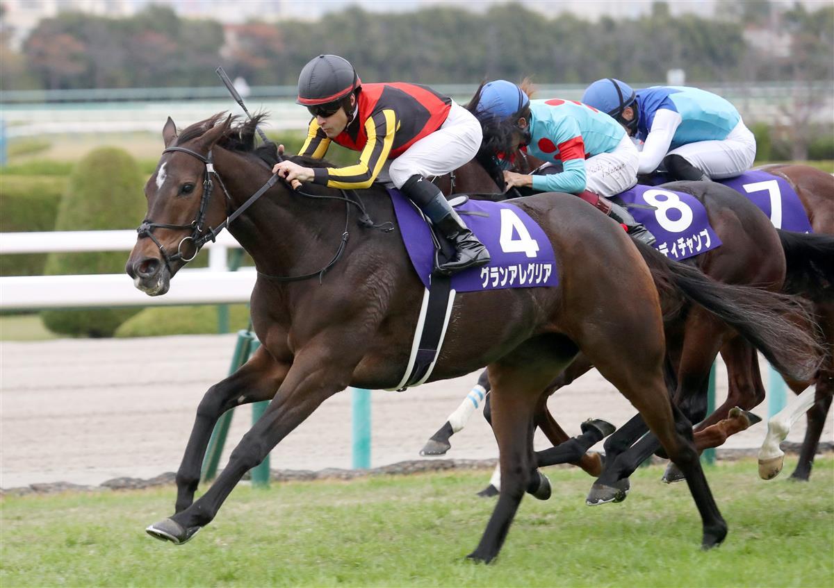 每日賽馬晚報(2021年2月3日),來季轉播賽有37個賽馬日,放聲歡呼跑大阪盃