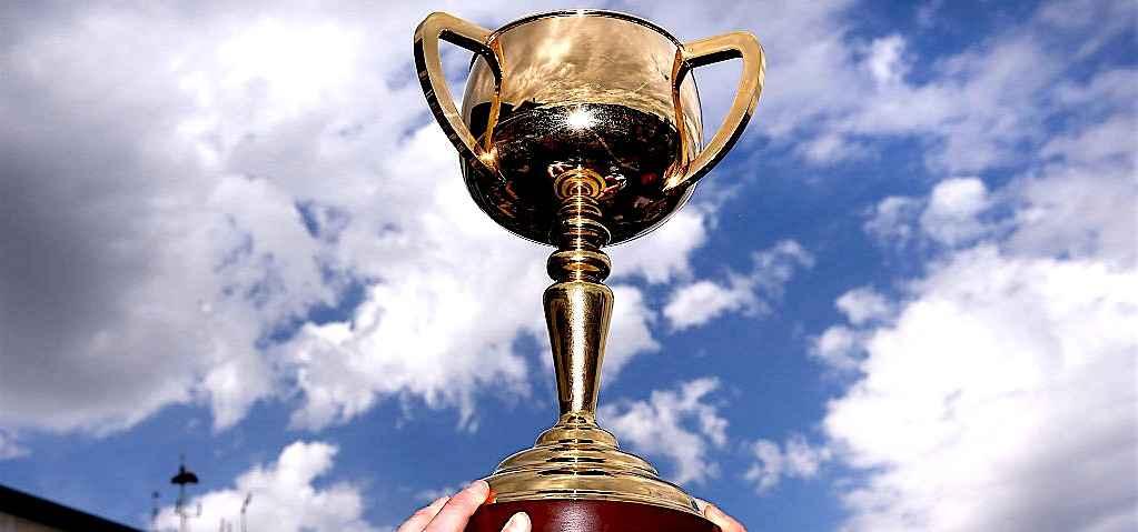 舉國停頓的賽事,墨爾本盃24駒全分析