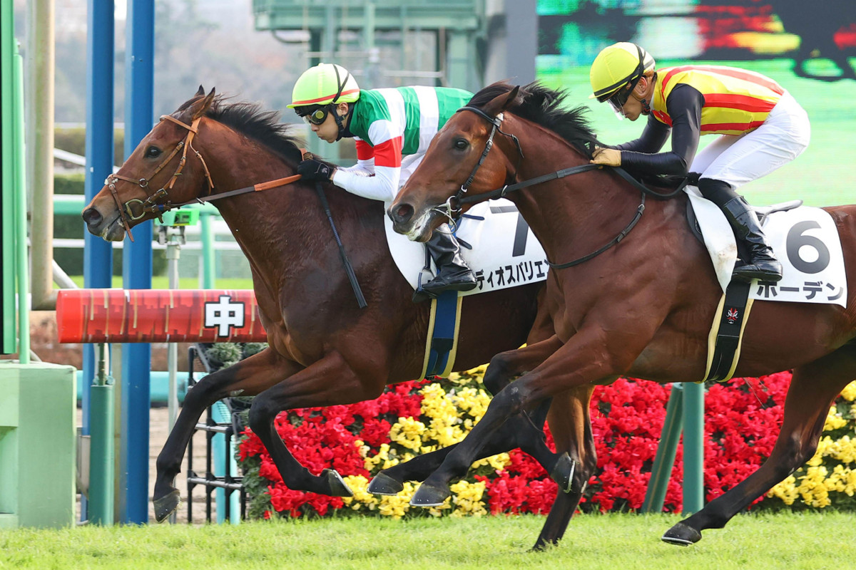 每日賽馬晚報(2020年12月14日),週日一合併版,Te Akau Racing有意將賽馬版圖延至澳洲,比利時龍贏大都會錦標熱身賽