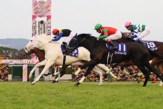 阪神兩歲牝馬錦標,白毛馬Sodashi不敗造出創舉