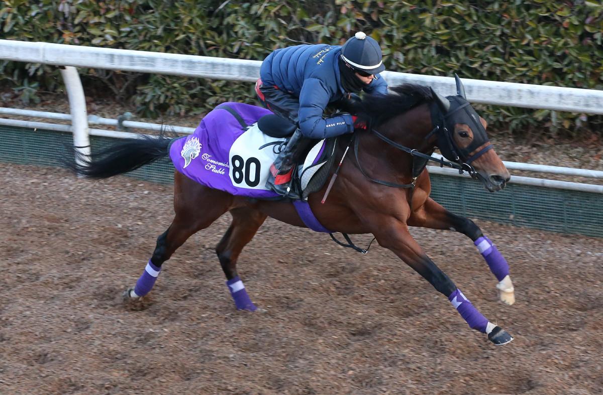 每日賽馬晚報(2021年1月13日),雷神敲定經典一哩賽座騎,短途快馬Sabuno Junior成地方馬王