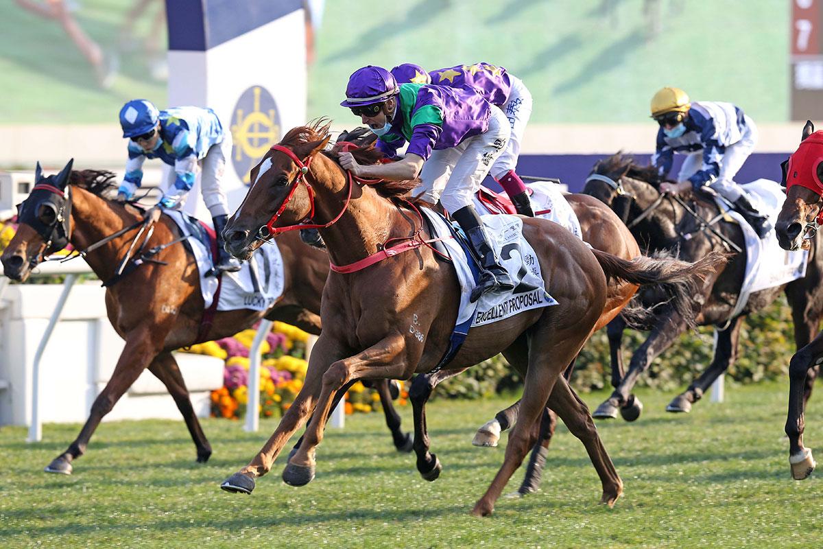 香港四歲馬系列賽新風雲壓軸篇,勁搏可以終極再搏嗎?
