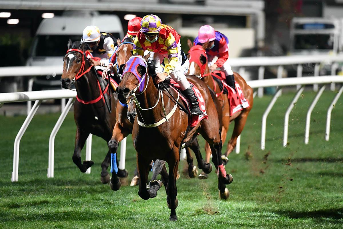 每日賽馬晚報(2021年1月28日),豪萬加盟英國馬房,沙地盃各路人馬準備好